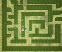 plant_trap_1